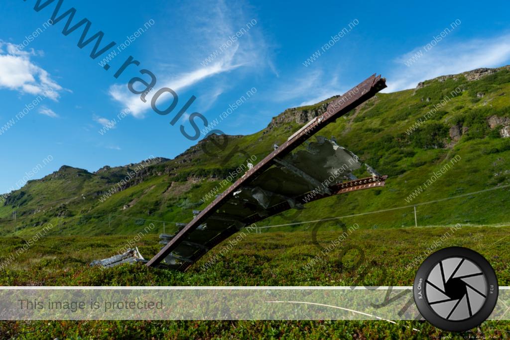 Il-4 Sarnes